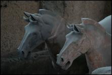 CHINE Xian chevaux armee de terre cuite septembre 2007