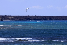 kitesurf-kiholo-bay