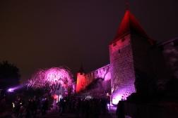 SUISSE Chateau et arbre rose Morat